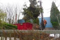 Bomenkap-boulepark-EWPC-005