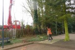 Bomenkap-boulepark-EWPC-013