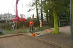Bomenkap-boulepark-EWPC-016