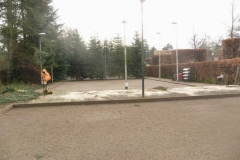Bomenkap-boulepark-EWPC-024