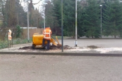 Bomenkap-boulepark-EWPC-027