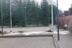 Bomenkap-boulepark-EWPC-028